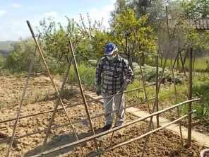 ramare l'orto vertine (6)