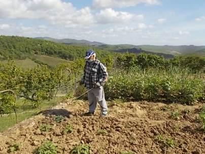 ramare l'orto vertine (8)