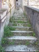sudicio scale piazza marconi berardenga (2)