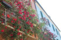 terrazzo di rose rapolano terme (16)