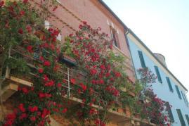 terrazzo di rose rapolano terme (2)