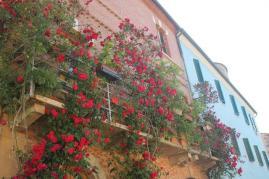 terrazzo di rose rapolano terme (3)