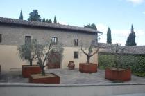 vasi olivo castello di albola (1)