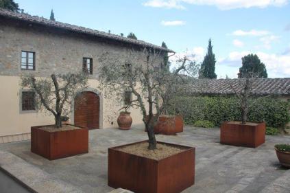 vasi olivo castello di albola (7)