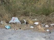 arceno cassonetti spazzatura 2020 (2)