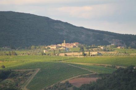 bossi, castell'in villa, villa a sesta (14)