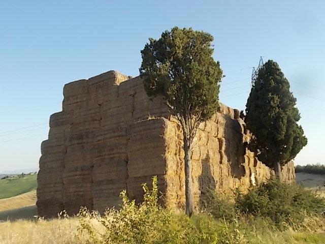 cattedrale di paglia vescona