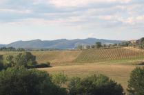 strada guistrigona, panoramica fra chianti e crete senesi (10)