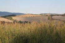 strada guistrigona, panoramica fra chianti e crete senesi (2)