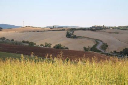 strada guistrigona, panoramica fra chianti e crete senesi (4)