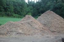 taglio bosco e cippato torrente malena (1)