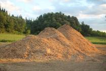 taglio bosco e cippato torrente malena (10)