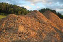 taglio bosco e cippato torrente malena (12)