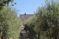 castello di orgiale (13)