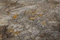 pavimento-duomo-siena-35