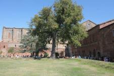 abbazia san galgano nuovo mulino bianco (4)