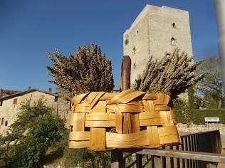 lavanda vertine (1)