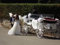 matrimonio vertine settembre 2020 (22)