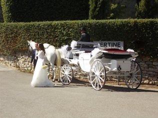 matrimonio vertine settembre 2020 (23)