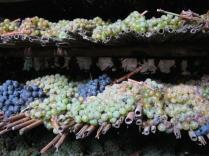 uva-per-vinsanto