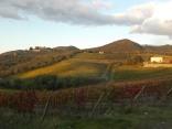 castello di brolio, tramonto, vigne (10)
