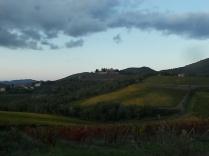 castello di brolio, tramonto, vigne (11)