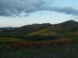 castello di brolio, tramonto, vigne (12)