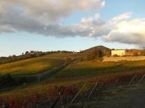 castello di brolio, tramonto, vigne (5)