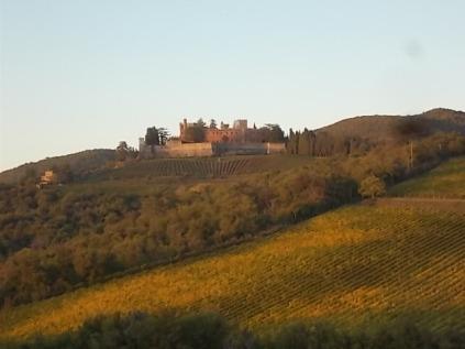 castello di brolio, tramonto, vigne (8)
