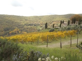 castello di meleto autunno 2020 (15)