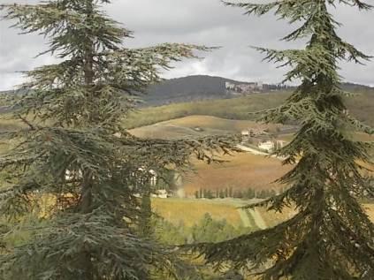 castello di meleto autunno 2020 (7)