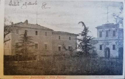 felsina cedro 1903 cartolina pubblicata da paolo mugnai