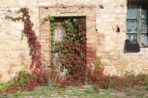 podernovi, leccione, villa geggiano, omaggio bernardo bertolucci (4)