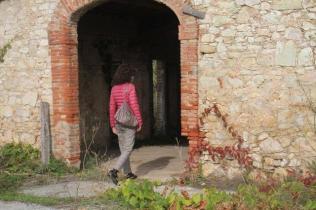 podernovi, leccione, villa geggiano, omaggio bernardo bertolucci (5)