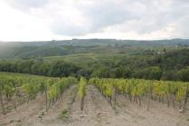 podernovi, leccione, villa geggiano, omaggio bernardo bertolucci (9)