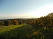 villa a sesta foliage ottobre 2020 (11)