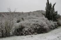 montegrossi neve 10 gennaio 2021 (4)