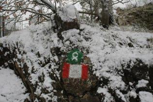 montegrossi neve 10 gennaio 2021 (6)