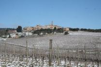 berardenga neve febbraio 2021 (3)