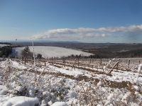 brolio podernovi neve febbraio 2021 (1)
