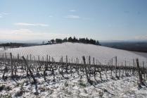 brolio podernovi neve febbraio 2021 (12)