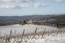 brolio podernovi neve febbraio 2021 (13)