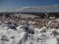brolio podernovi neve febbraio 2021 (3)