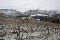 vertine neve febbraio 2021 (1)