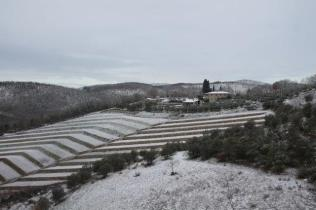vertine neve febbraio 2021 (11)