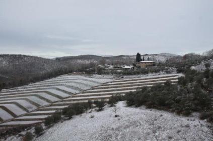 vertine neve febbraio 2021 (12)