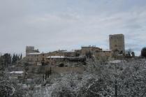 vertine neve febbraio 2021 (16)