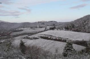 vertine neve febbraio 2021 (20)