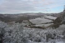 vertine neve febbraio 2021 (24)