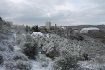 vertine neve febbraio 2021 (25)